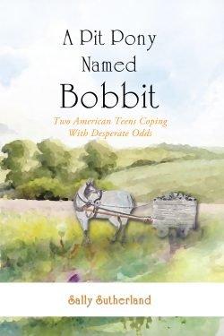 A Pit Pony Named Bobbit